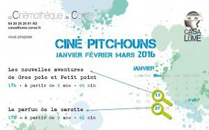 PROGRAMME CINE PITCHOUNS